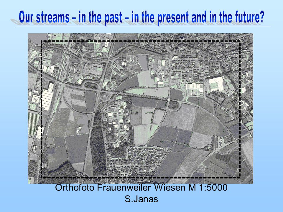 Orthofoto Frauenweiler Wiesen M 1:5000 S.Janas