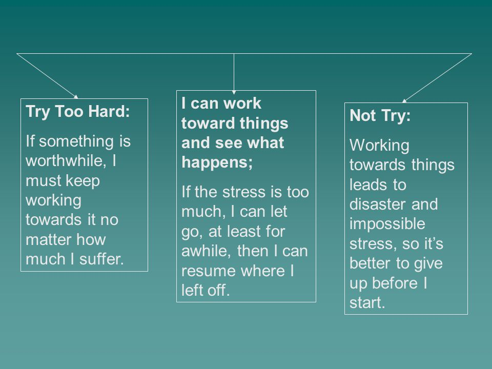 Try Too Hard: If something is worthwhile, I must keep working towards it no matter how much I suffer. Not Try: Working towards things leads to disaste