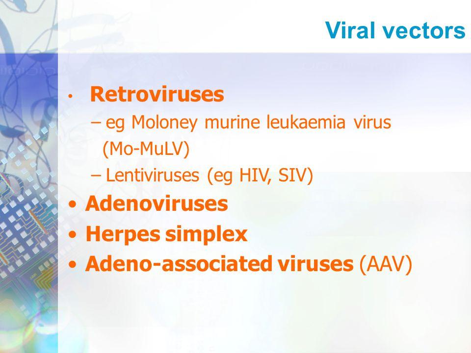 Retroviruses –eg Moloney murine leukaemia virus (Mo-MuLV) –Lentiviruses (eg HIV, SIV) Adenoviruses Herpes simplex Adeno-associated viruses (AAV)