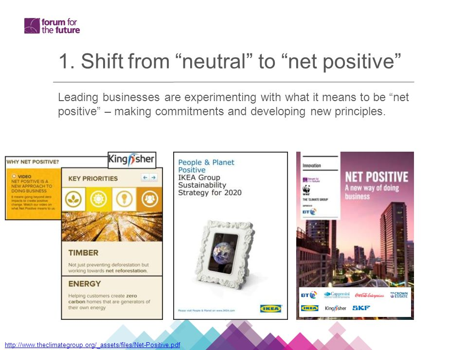 Leading businesses are experimenting with what it means to be net positive – making commitments and developing new principles.