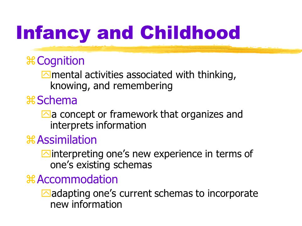 Infancy and Childhood zCognition ymental activities associated with thinking, knowing, and remembering zSchema ya concept or framework that organizes and interprets information zAssimilation yinterpreting one's new experience in terms of one's existing schemas zAccommodation yadapting one's current schemas to incorporate new information