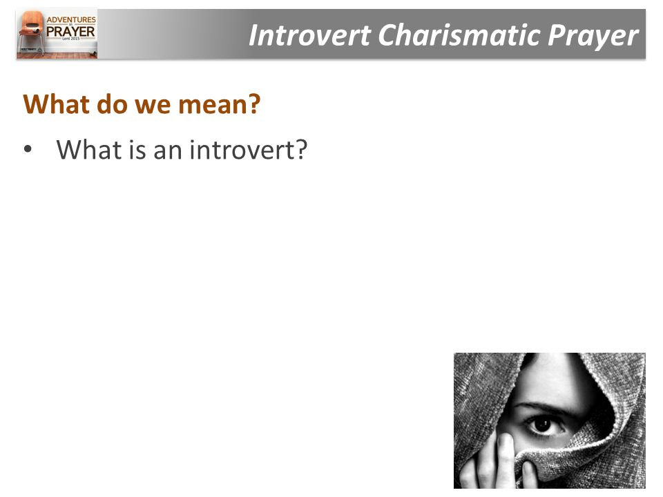 What do we mean What is an introvert