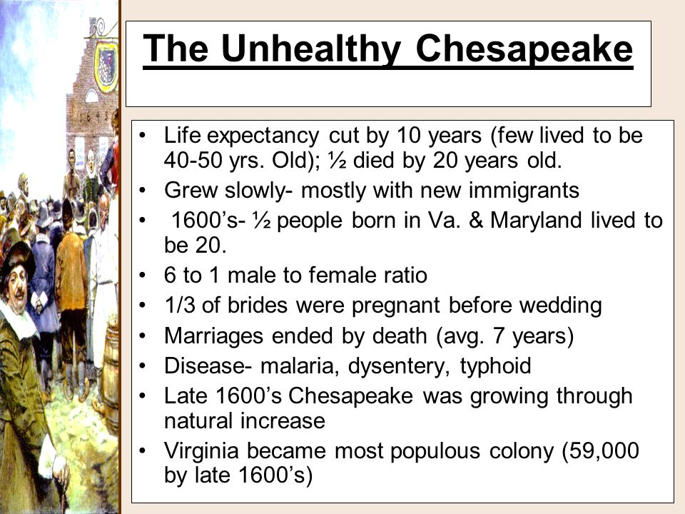The Unhealthy Chesapeake Life expectancy cut by 10 years (few lived to be 40-50 yrs. Old); ½ died by 20 years old. Grew slowly- mostly with new immigr