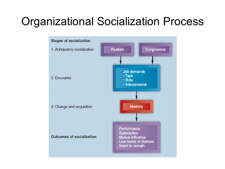 Organizational Socialization Process