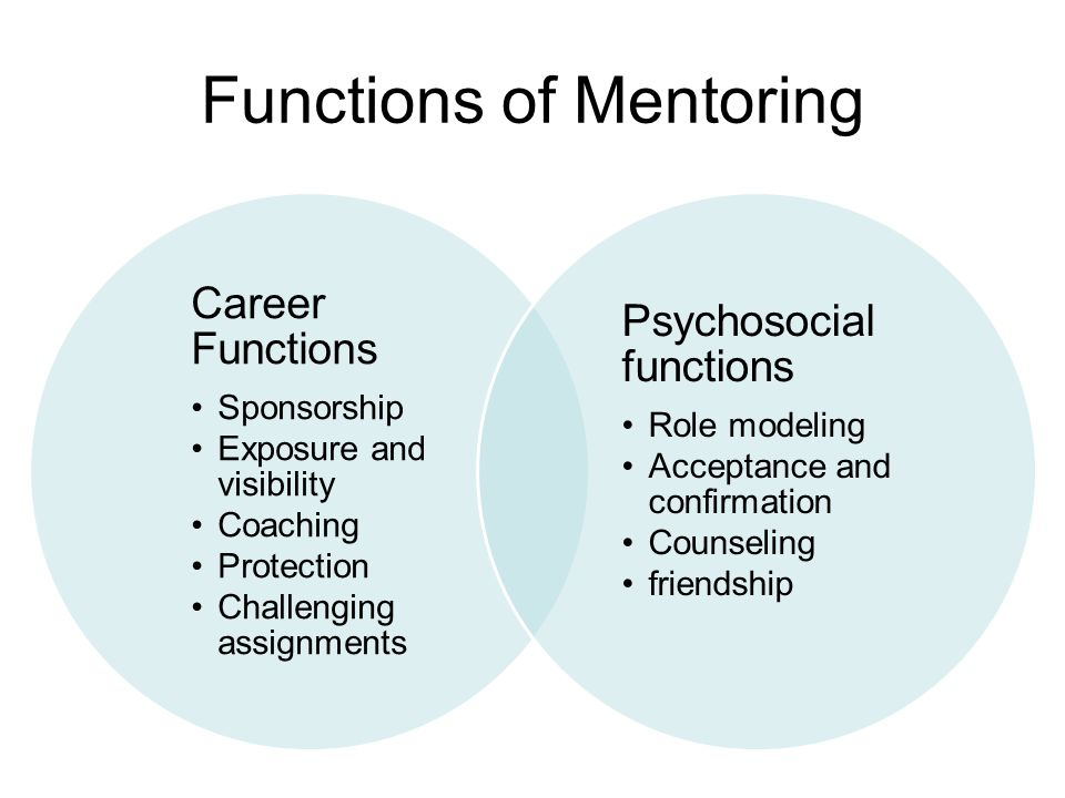 Functions of Mentoring Career Functions Sponsorship Exposure and visibility Coaching Protection Challenging assignments Psychosocial functions Role mo
