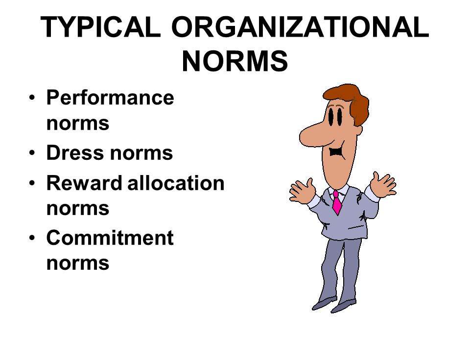 TYPICAL ORGANIZATIONAL NORMS Performance norms Dress norms Reward allocation norms Commitment norms