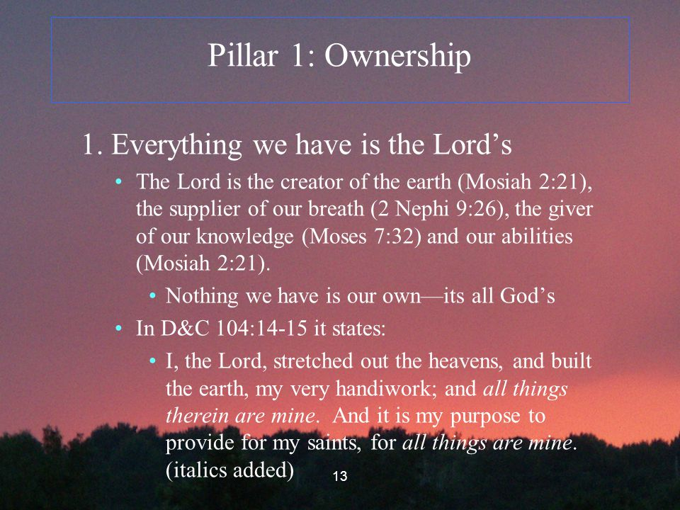 13 Pillar 1: Ownership 1.