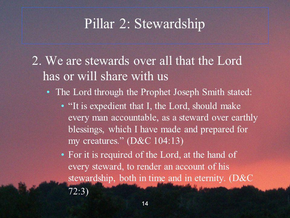 14 Pillar 2: Stewardship 2.
