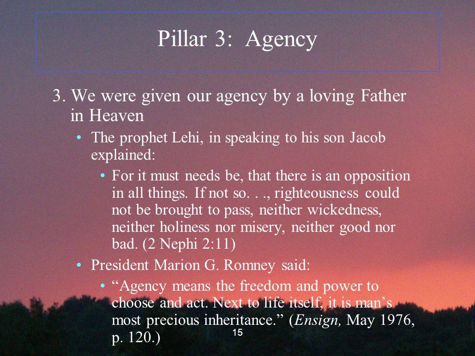 15 Pillar 3: Agency 3.