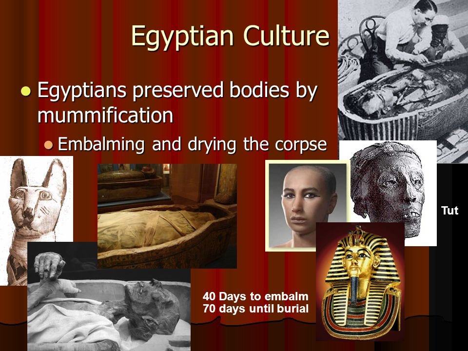 Egyptian Culture Egyptians preserved bodies by mummification Egyptians preserved bodies by mummification Embalming and drying the corpse Embalming and drying the corpse Tut 40 Days to embalm 70 days until burial