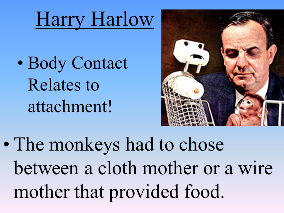 Harry Harlow Body Contact Relates to attachment! The monkeys had to chose between a cloth mother or a wire mother that provided food.