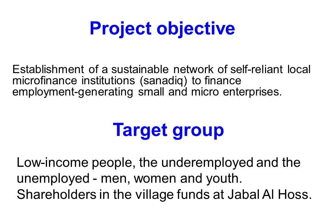 Project objective Establishment of a sustainable network of self-reliant local microfinance institutions (sanadiq) to finance employment-generating small and micro enterprises.