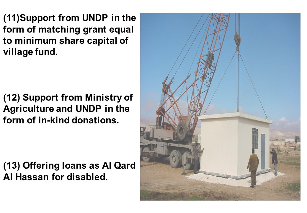 (11)Support from UNDP in the form of matching grant equal to minimum share capital of village fund.