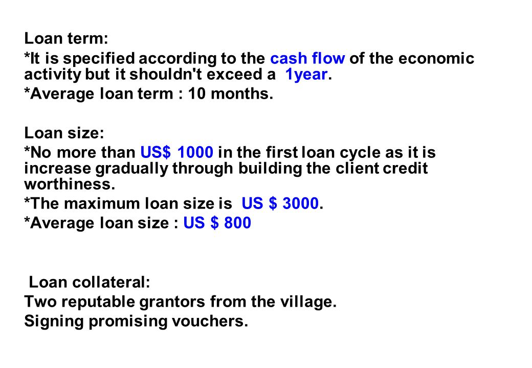 Loan term: *It is specified according to the cash flow of the economic activity but it shouldn t exceed a 1year.