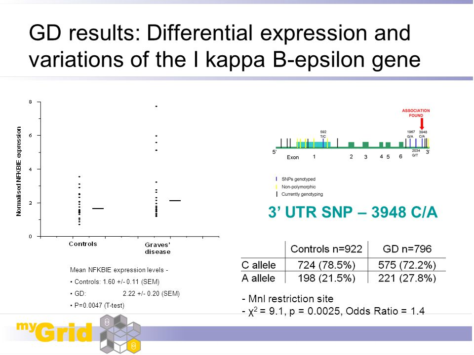 GD results: Differential expression and variations of the I kappa B-epsilon gene Mean NFKBIE expression levels - Controls: 1.60 +/- 0.11 (SEM) GD: 2.2