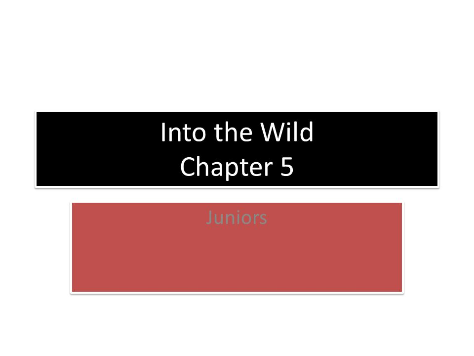 Into the Wild Chapter 5 Juniors
