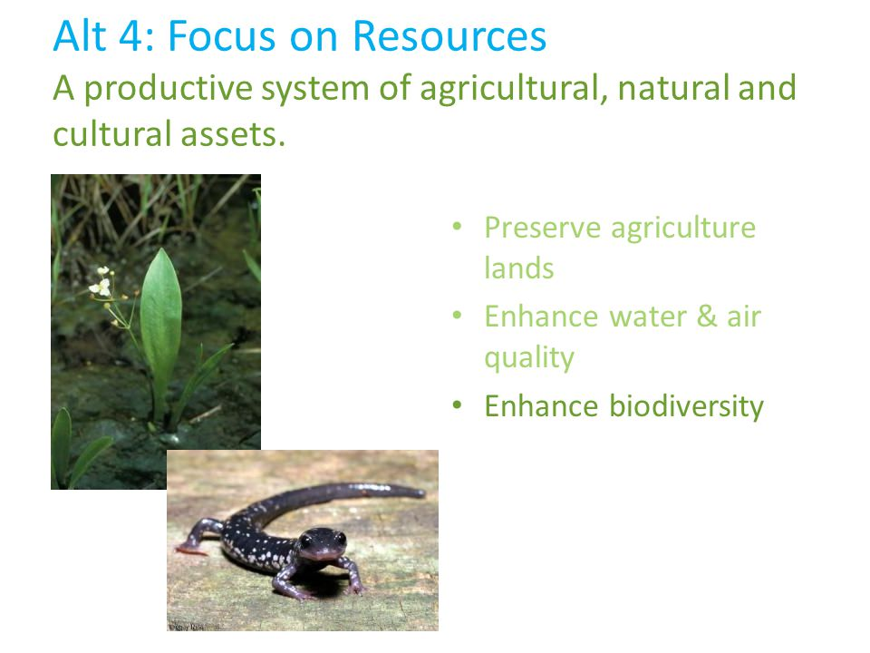Preserve agriculture lands Enhance water & air quality Enhance biodiversity Alt 4: Focus on Resources A productive system of agricultural, natural and cultural assets.