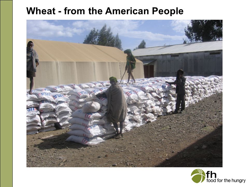 Wheat - from the American People