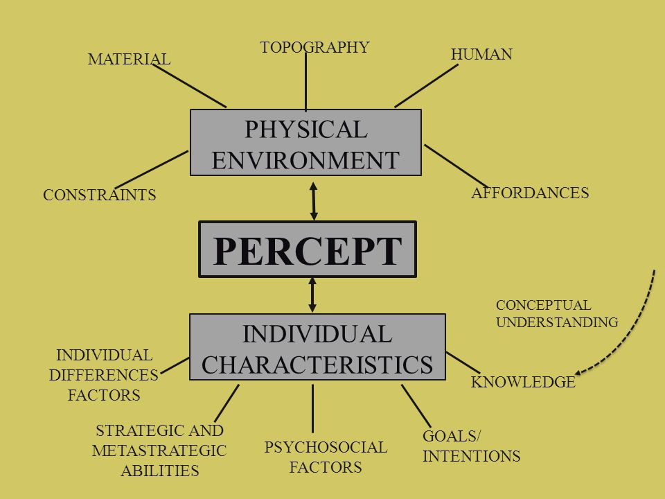 PERCEPT PHYSICAL ENVIRONMENT INDIVIDUAL CHARACTERISTICS AFFORDANCES CONSTRAINTS MATERIAL TOPOGRAPHY HUMAN KNOWLEDGE GOALS/ INTENTIONS PSYCHOSOCIAL FAC
