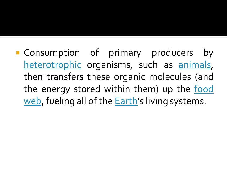  Definition : the synthesis and storage of organic molecules during the growth and reproduction of photosynthetic organisms.