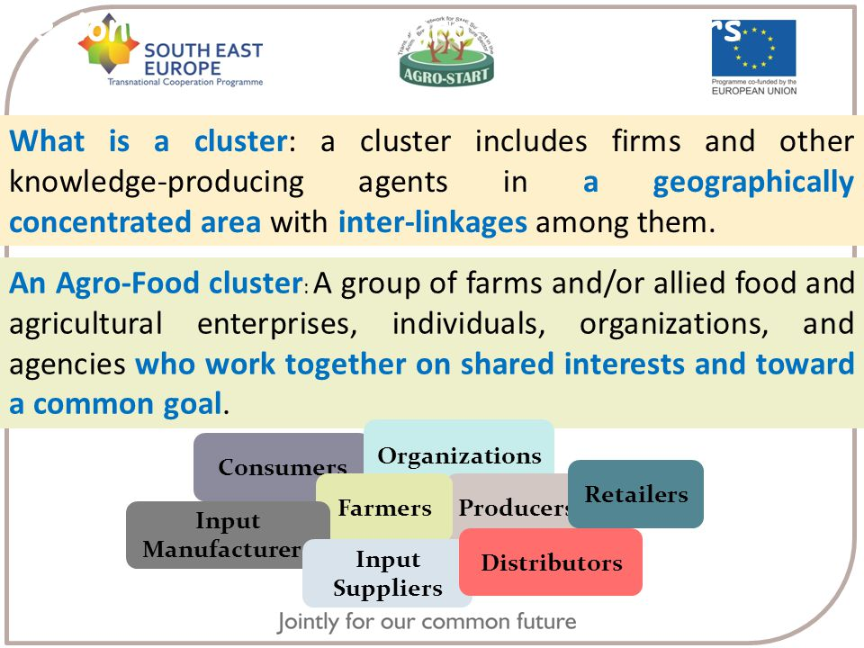 Regional Innovation Agro-Food clusters What is a cluster: a cluster includes firms and other knowledge-producing agents in a geographically concentrated area with inter-linkages among them.