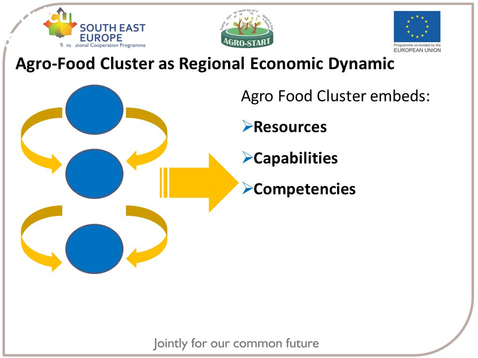 Agriculture in the Region of Lower Saxony Agro-Food Cluster as Regional Economic Dynamic Agro Food Cluster embeds:  Resources  Capabilities  Competencies