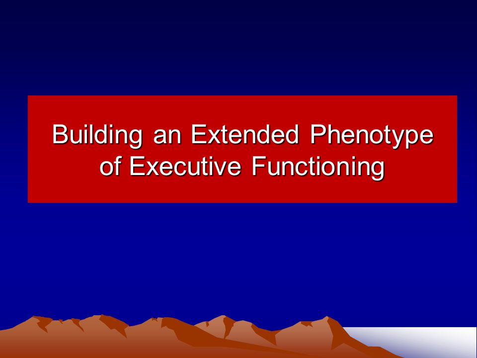 Building an Extended Phenotype of Executive Functioning