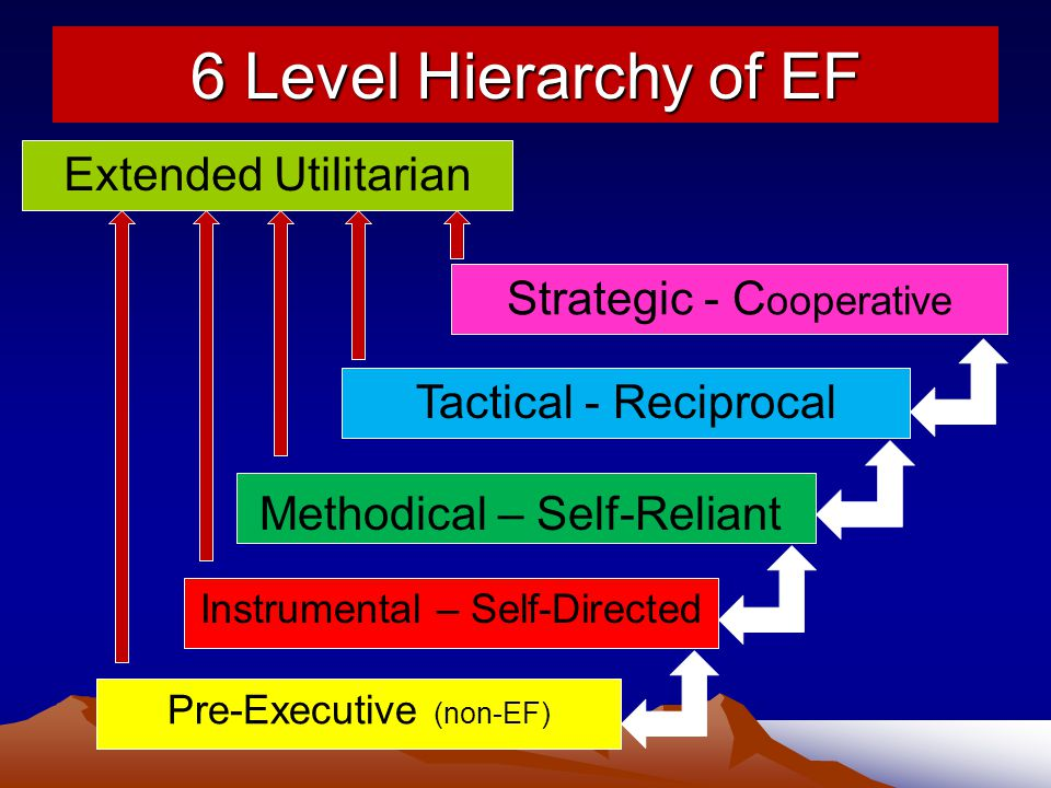 6 Level Hierarchy of EF Strategic - C ooperative Tactical - Reciprocal Methodical – Self-Reliant Pre-Executive (non-EF) Extended Utilitarian Instrumental – Self-Directed