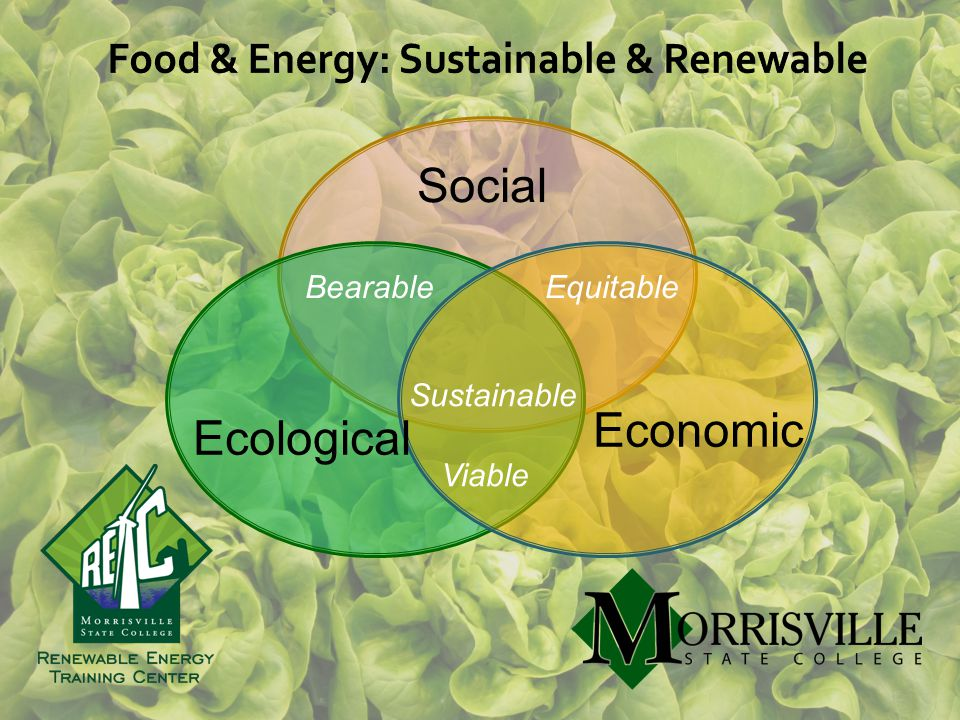 Social Ecological Economic Sustainable Bearable Viable Equitable