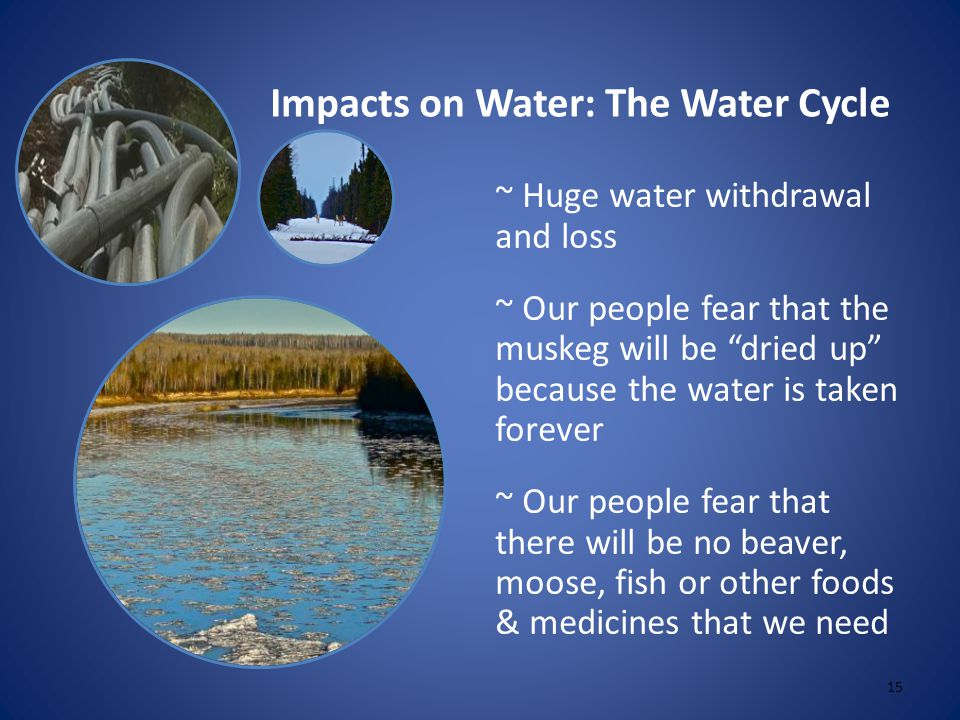 Impacts on Water: The Water Cycle 15 ~ Huge water withdrawal and loss ~ Our people fear that the muskeg will be dried up because the water is taken forever ~ Our people fear that there will be no beaver, moose, fish or other foods & medicines that we need