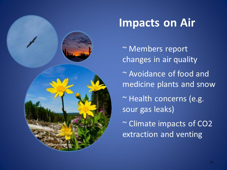 Impacts on Air ~ Members report changes in air quality ~ Avoidance of food and medicine plants and snow ~ Health concerns (e.g.