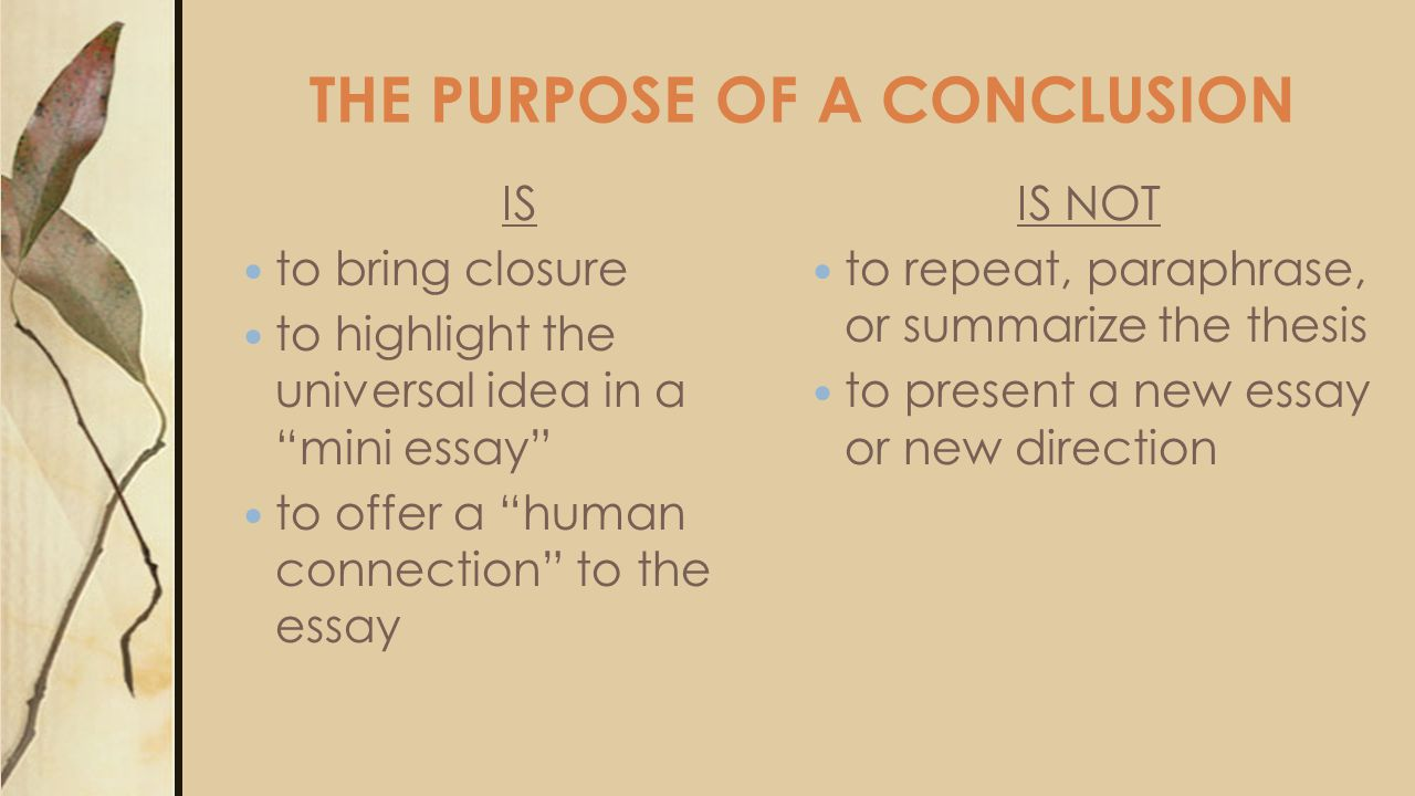 THE PURPOSE OF A CONCLUSION IS to bring closure to highlight the universal idea in a mini essay to offer a human connection to the essay IS NOT to repeat, paraphrase, or summarize the thesis to present a new essay or new direction