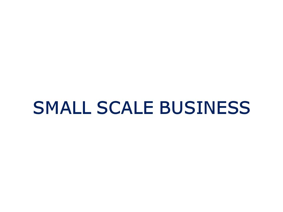 SMALL SCALE BUSINESS