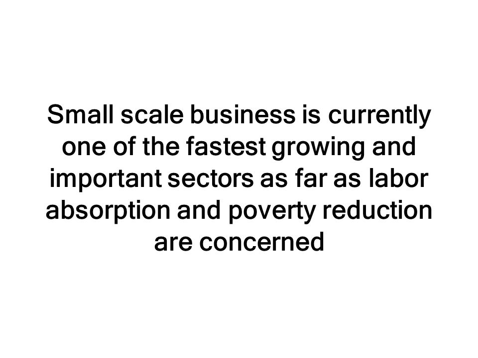 Small scale business is currently one of the fastest growing and important sectors as far as labor absorption and poverty reduction are concerned