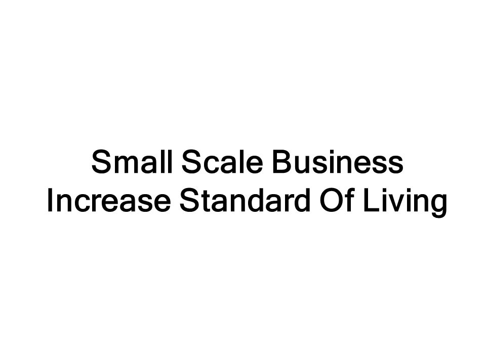 Small Scale Business Increase Standard Of Living