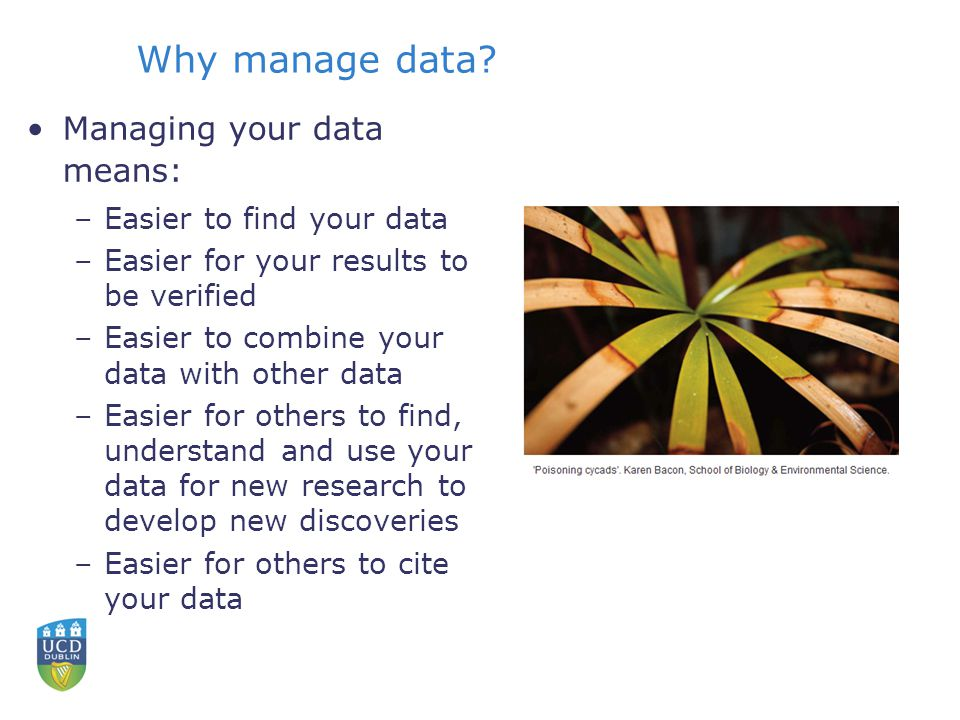 Why manage data.
