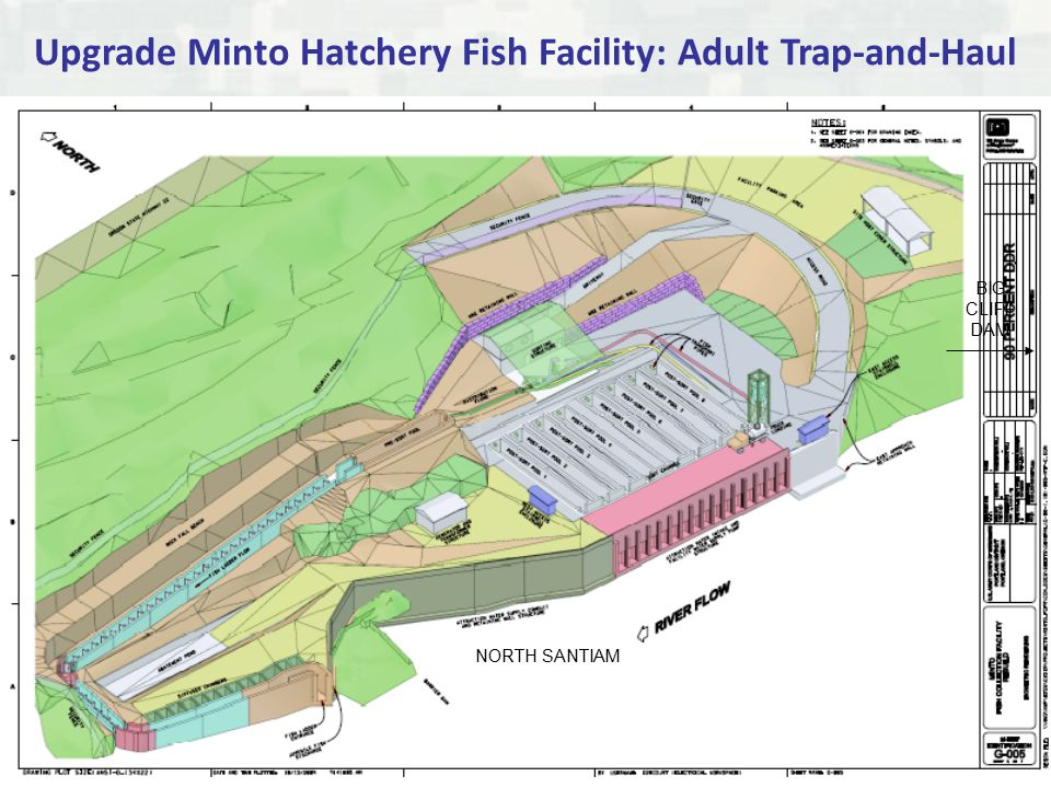BUILDING STRONG ® Upgrade Minto Hatchery Fish Facility: Adult Trap-and-Haul NORTH SANTIAM BIG CLIFF DAM
