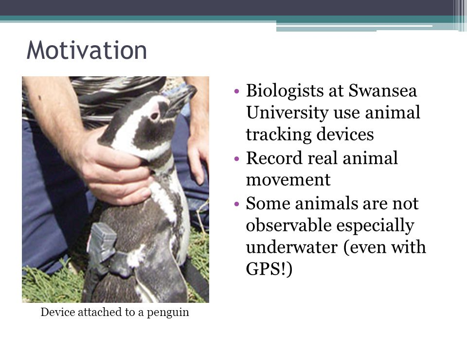 Motivation Biologists at Swansea University use animal tracking devices Record real animal movement Some animals are not observable especially underwater (even with GPS!) Device attached to a penguin