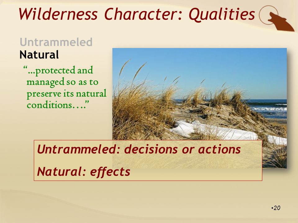 ...protected and managed so as to preserve its natural conditions…. Wilderness Character: Qualities Natural Untrammeled 20 Untrammeled: decisions or actions Natural: effects