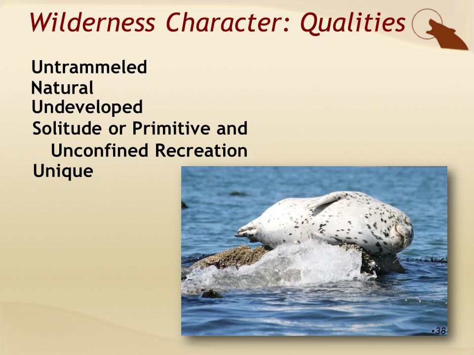 Wilderness Character: Qualities Natural Untrammeled Undeveloped Solitude or Primitive and Unconfined Recreation Unique 38