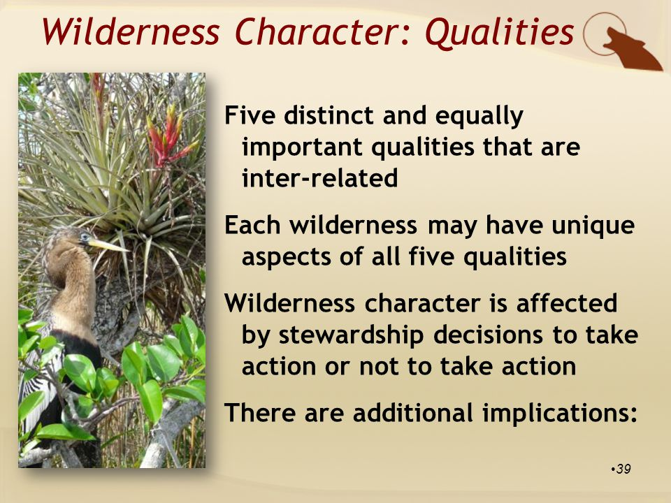 Five distinct and equally important qualities that are inter-related Each wilderness may have unique aspects of all five qualities Wilderness character is affected by stewardship decisions to take action or not to take action There are additional implications: Wilderness Character: Qualities 39