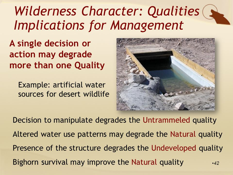 Example: artificial water sources for desert wildlife Decision to manipulate degrades the Untrammeled quality Altered water use patterns may degrade the Natural quality Presence of the structure degrades the Undeveloped quality Bighorn survival may improve the Natural quality Wilderness Character: Qualities Implications for Management A single decision or action may degrade more than one Quality 42