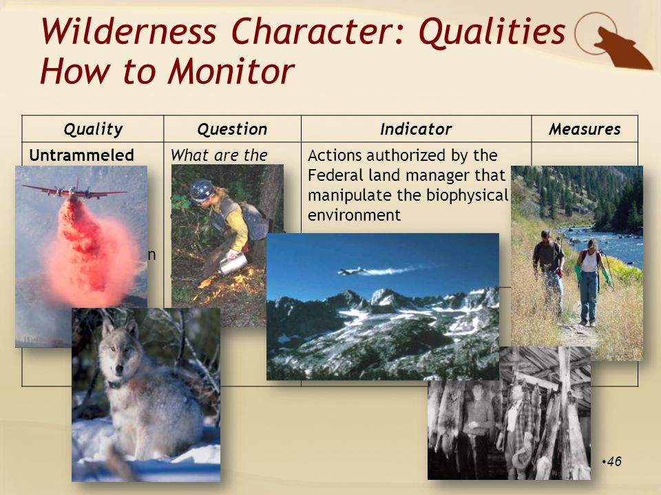 QualityQuestionIndicatorMeasures Untrammeled Wilderness is essentially unhindered and free from modern human control or manipulation What are the trends in actions that control or manipulate the earth and its community of life inside wilderness.
