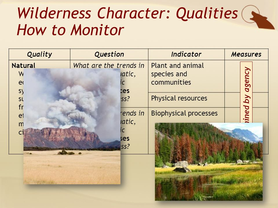 QualityQuestionIndicatorMeasures Natural Wilderness ecological systems are substantially free from the effects of modern civilization What are the trends in terrestrial, aquatic, and atmospheric natural resources inside wilderness.