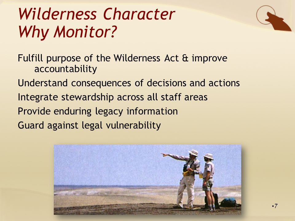 Untrammeled Degraded by actions that manipulate, control, or hinder the community of life Wilderness Character: Qualities Spraying weeds Killing predators Collaring Suppressing / lighting fires 18