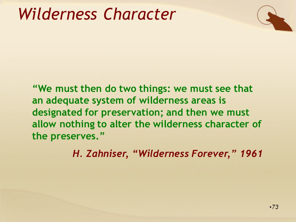 We must then do two things: we must see that an adequate system of wilderness areas is designated for preservation; and then we must allow nothing to alter the wilderness character of the preserves. H.