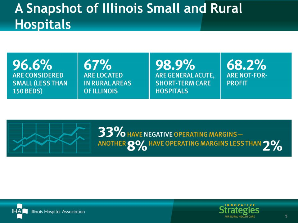 A Snapshot of Illinois Small and Rural Hospitals 5