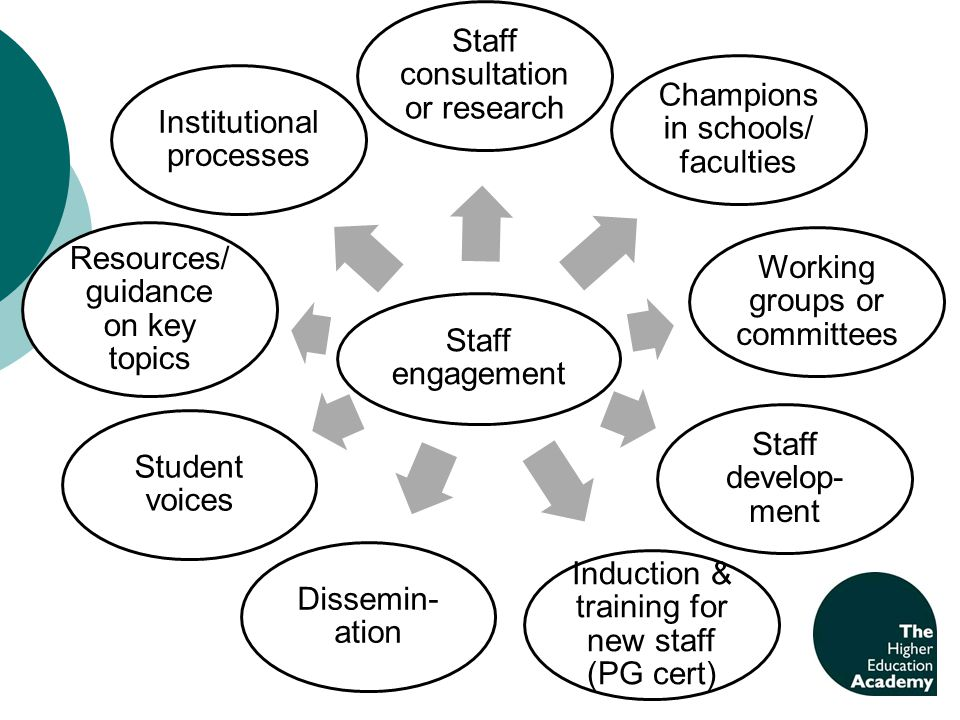 Staff engagement Staff consultation or research Champions in schools/ faculties Working groups or committees Staff develop- ment Induction & training for new staff (PG cert) Dissemin- ation Student voices Resources/ guidance on key topics Institutional processes