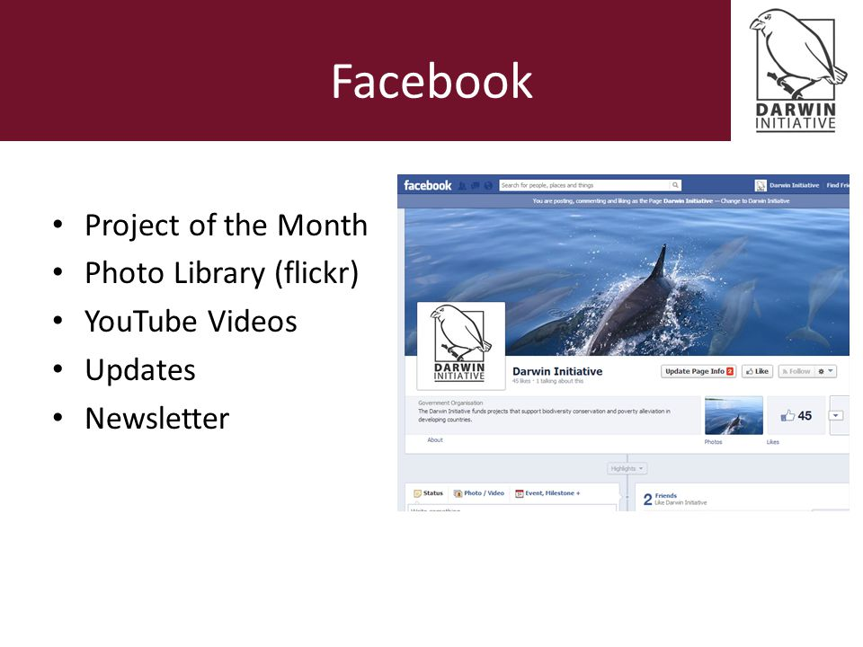 Facebook Project of the Month Photo Library (flickr) YouTube Videos Updates Newsletter