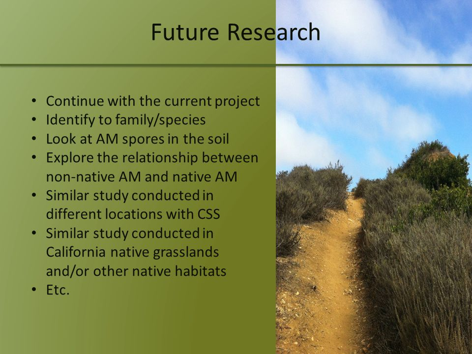 Future Research Continue with the current project Identify to family/species Look at AM spores in the soil Explore the relationship between non-native AM and native AM Similar study conducted in different locations with CSS Similar study conducted in California native grasslands and/or other native habitats Etc.